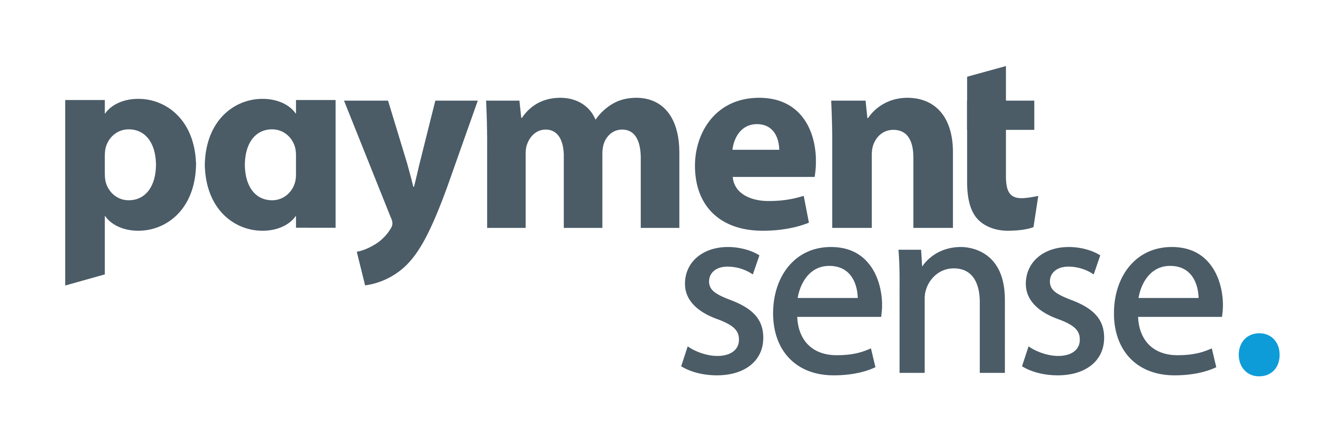 Copy Of Paymentsenselogotype